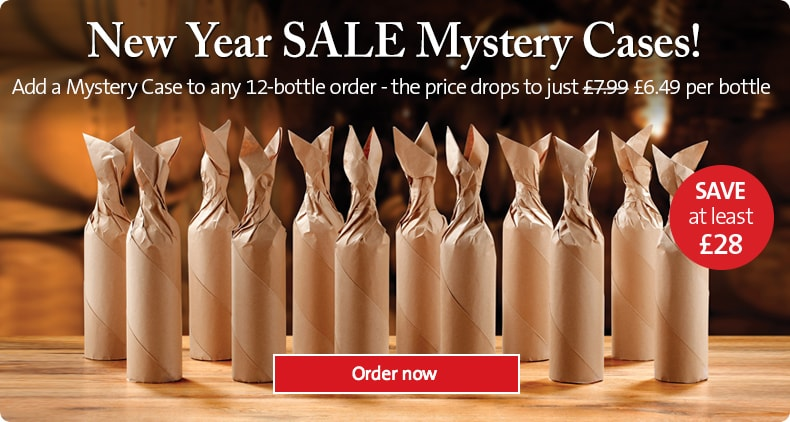 New Year SALE Mystery Cases!