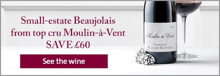 Small-estate Beaujolais from top cru Moulin-à-Vent – SAVE £60