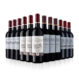 Bordeaux Mixed Case