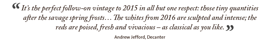 It's the perfect follow-on vintage to 2015 in all but one respect: those tiny quantities after the savage spring frosts… The whites from 2016 are sculpted and intense; the reds are poised, fresh and vivacious – as classical as you like.