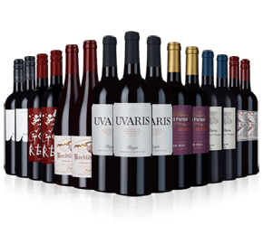 Wine Rack Essentials 15 bottle reds case