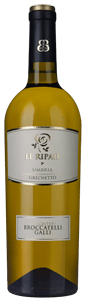 Broccatelli Galli Le Ripaie Grechetto 2017